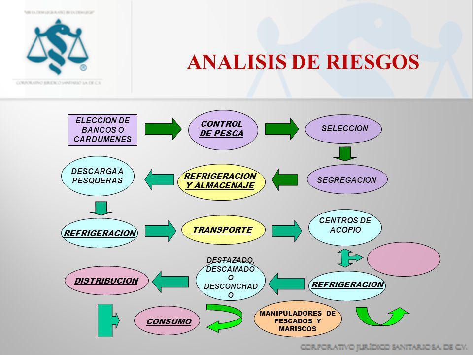 ANALISIS DE RIESGOS ELECCION DE BANCOS O CARDUMENES CONTROL DE PESCA SELECCION SEGREGACION TRANSPORTE REFRIGERACION Y ALMACENAJE DESCARGA A PESQUERAS CENTROS DE ACOPIO REFRIGERACION DESTAZADO, DESCAMADO O DESCONCHAD O DISTRIBUCION CONSUMO MANIPULADORES DE PESCADOS Y MARISCOS REFRIGERACION