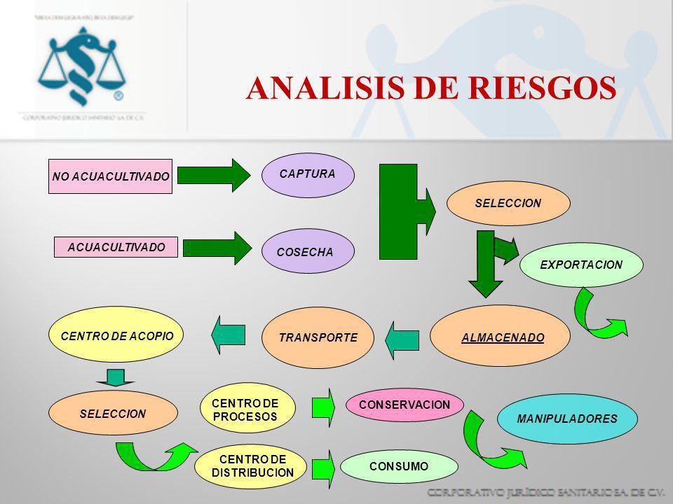 ANALISIS DE RIESGOS SELECCION NO ACUACULTIVADO CAPTURA COSECHA CENTRO DE ACOPIO TRANSPORTEALMACENADO SELECCION ACUACULTIVADO CENTRO DE PROCESOS CENTRO DE DISTRIBUCION CONSERVACION CONSUMO MANIPULADORES EXPORTACION