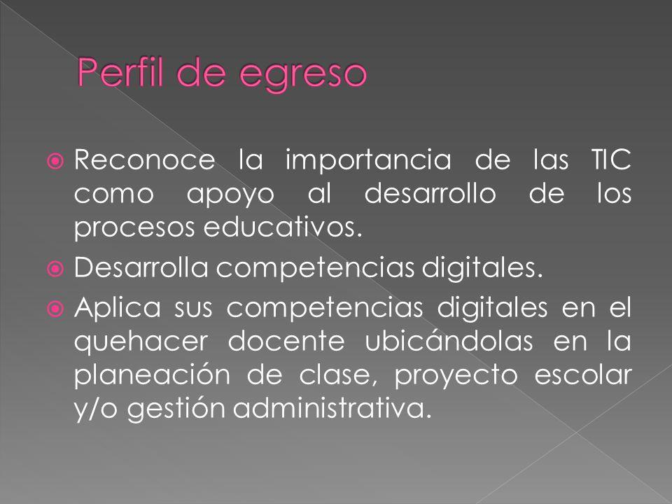 Reconoce la importancia de las TIC como apoyo al desarrollo de los procesos educativos.