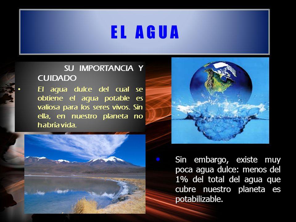 E L A G U A SU IMPORTANCIA Y CUIDADO El agua dulce del cual se obtiene el agua potable es valiosa para los seres vivos. Sin ella, en nuestro planeta n