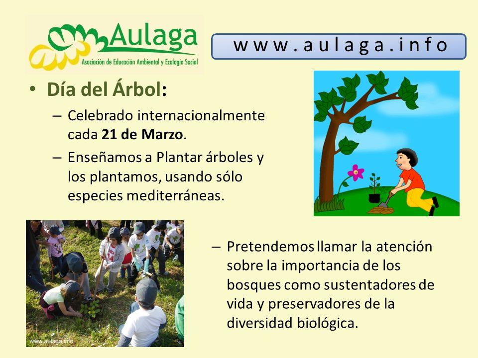 Día del Árbol: – Celebrado internacionalmente cada 21 de Marzo. – Enseñamos a Plantar árboles y los plantamos, usando sólo especies mediterráneas. w w