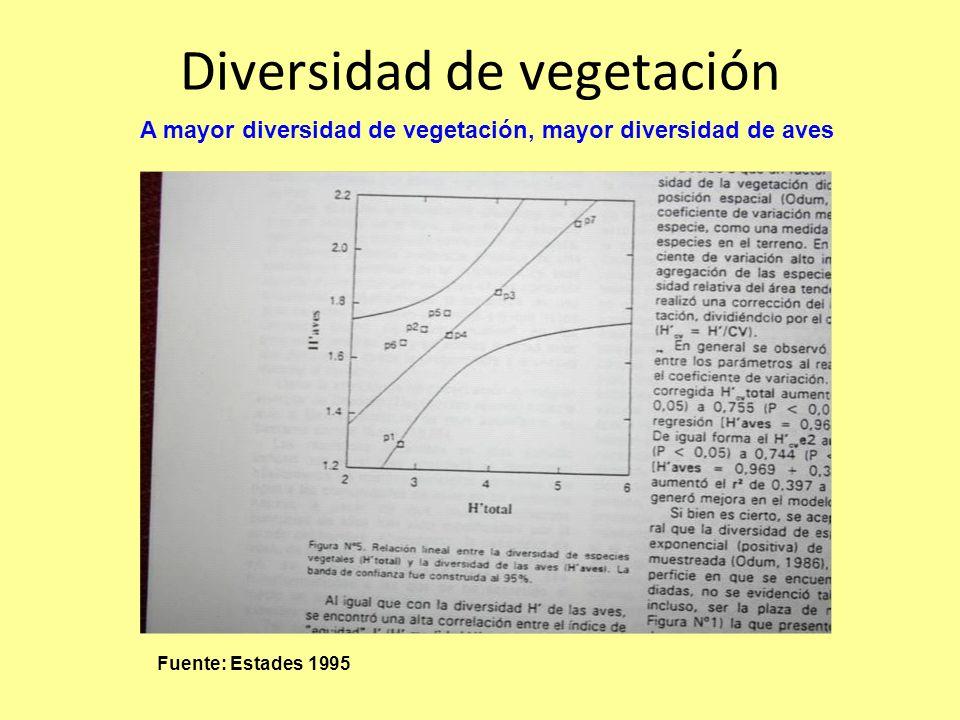 Diversidad de vegetación Fuente: Estades 1995 A mayor diversidad de vegetación, mayor diversidad de aves