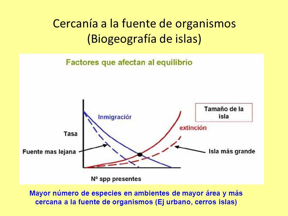 Cercanía a la fuente de organismos (Biogeografía de islas) Mayor número de especies en ambientes de mayor área y más cercana a la fuente de organismos (Ej urbano, cerros islas)