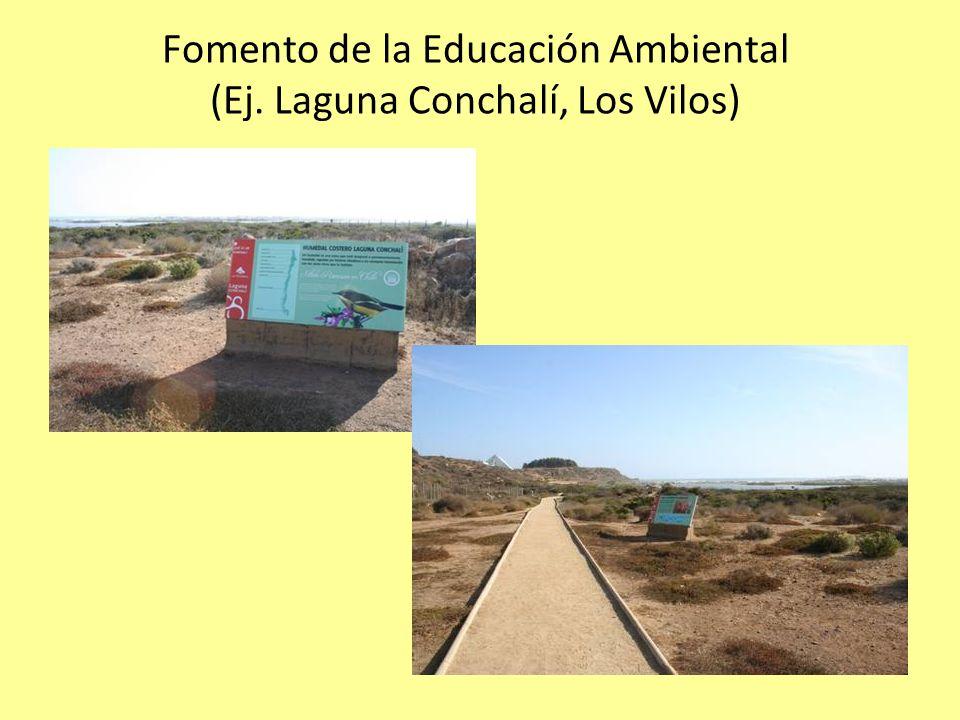 Fomento de la Educación Ambiental (Ej. Laguna Conchalí, Los Vilos)