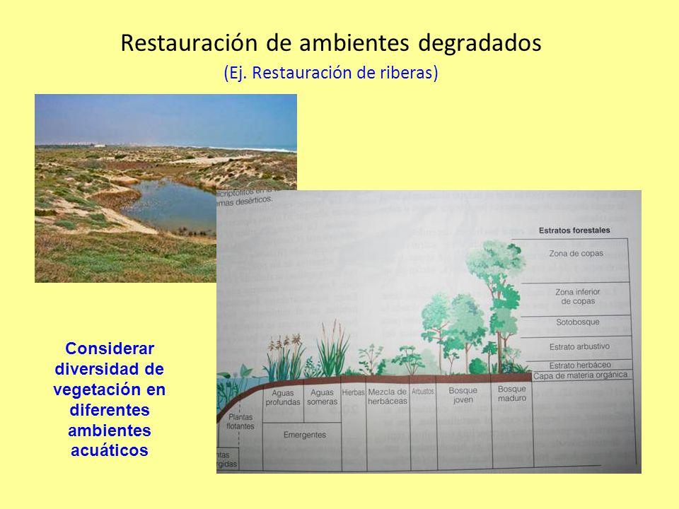 Restauración de ambientes degradados (Ej.