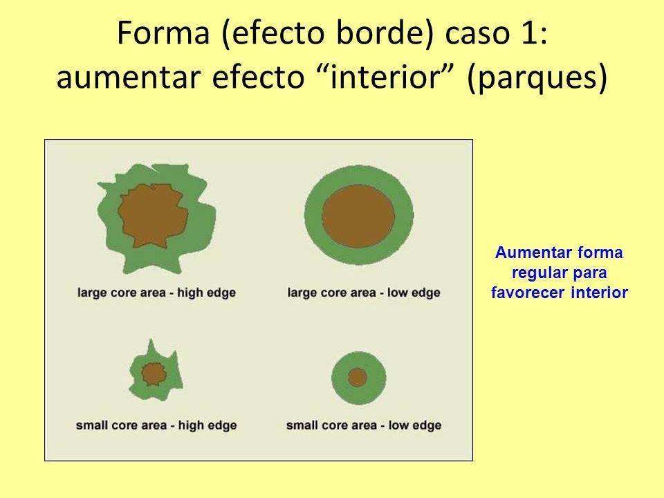 Forma (efecto borde) caso 1: aumentar efecto interior (parques) Aumentar forma regular para favorecer interior