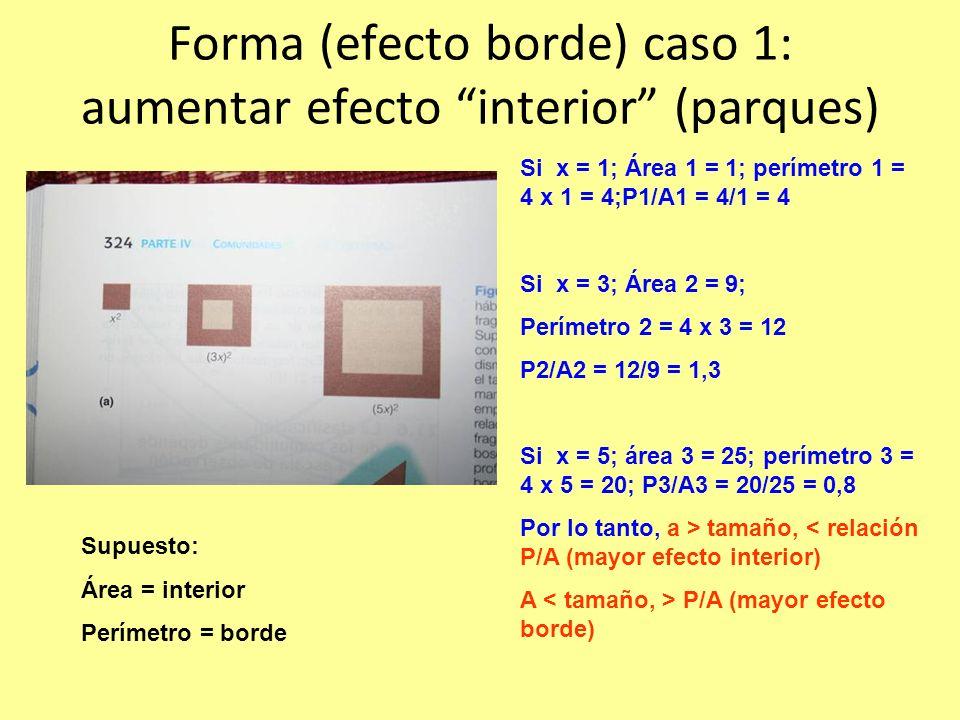 Forma (efecto borde) caso 1: aumentar efecto interior (parques) Si x = 1; Área 1 = 1; perímetro 1 = 4 x 1 = 4;P1/A1 = 4/1 = 4 Si x = 3; Área 2 = 9; Perímetro 2 = 4 x 3 = 12 P2/A2 = 12/9 = 1,3 Si x = 5; área 3 = 25; perímetro 3 = 4 x 5 = 20; P3/A3 = 20/25 = 0,8 Por lo tanto, a > tamaño, < relación P/A (mayor efecto interior) A P/A (mayor efecto borde) Supuesto: Área = interior Perímetro = borde