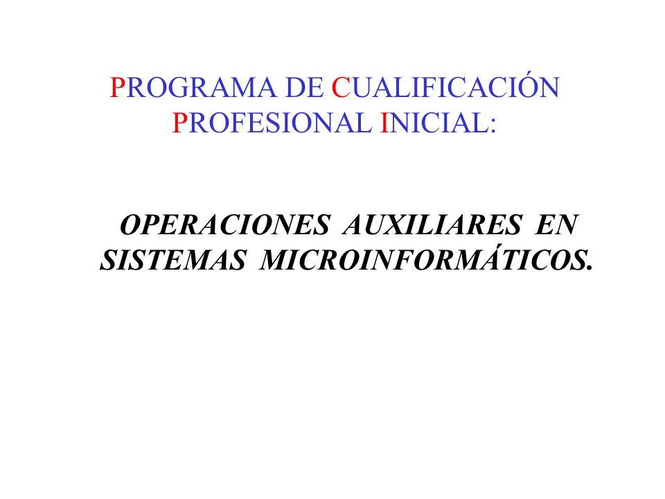 PROGRAMA DE CUALIFICACIÓN PROFESIONAL INICIAL: OPERACIONES AUXILIARES EN SISTEMAS MICROINFORMÁTICOS.