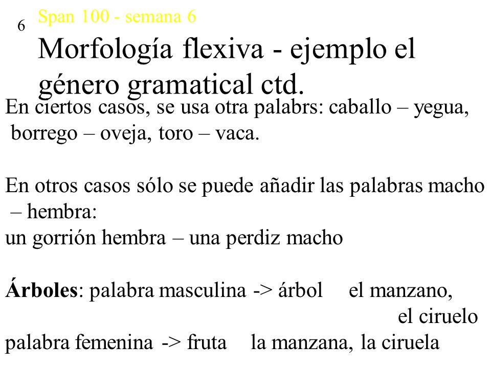 Span 100 - semana 6 Morfología flexiva - ejemplo el género gramatical ctd. 6 En ciertos casos, se usa otra palabrs: caballo – yegua, borrego – oveja,