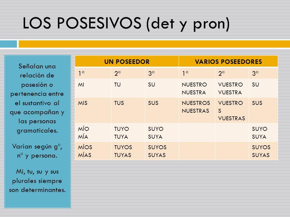 LOS POSESIVOS (det y pron) Señalan una relación de posesión o pertenencia entre el sustantivo al que acompañan y las personas gramaticales. Varían seg