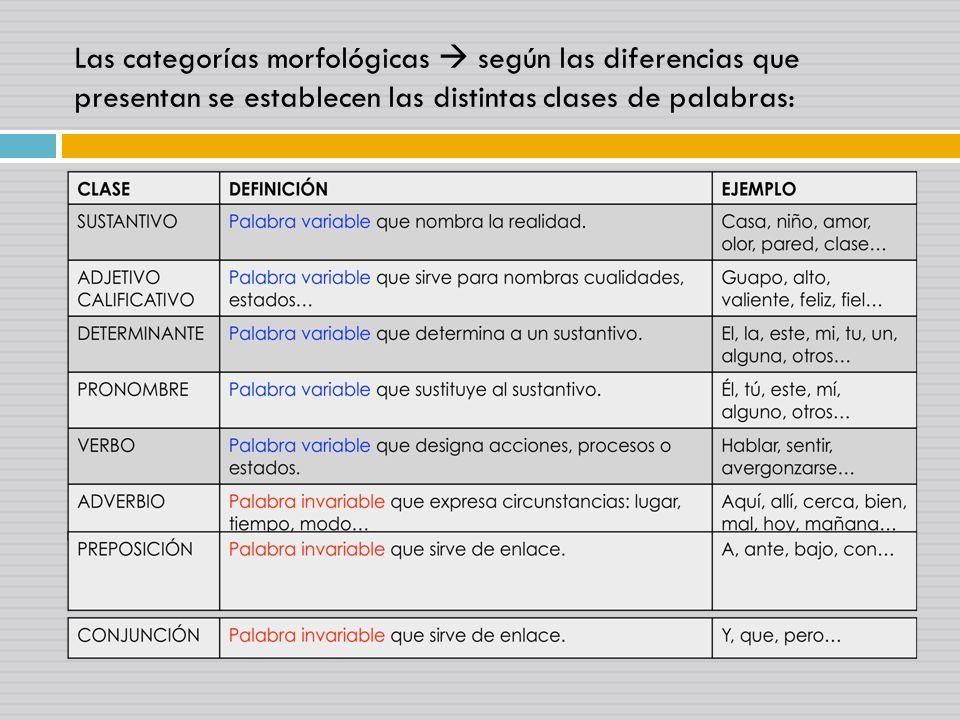 Las categorías morfológicas según las diferencias que presentan se establecen las distintas clases de palabras: