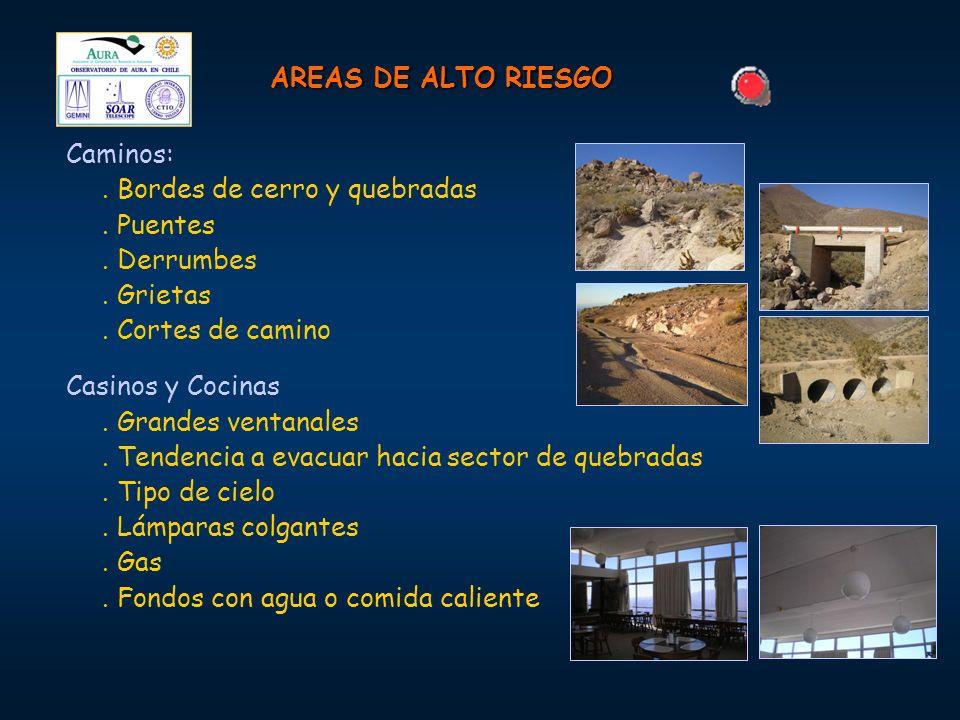 AREAS DE ALTO RIESGO Caminos:. Bordes de cerro y quebradas. Puentes. Derrumbes. Grietas. Cortes de camino Casinos y Cocinas. Grandes ventanales. Tende