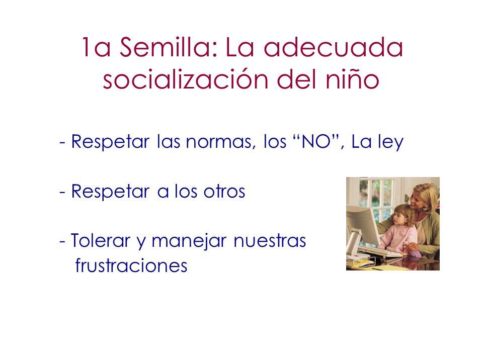 1a Semilla: La adecuada socialización del niño - Respetar las normas, los NO, La ley - Respetar a los otros - Tolerar y manejar nuestras frustraciones