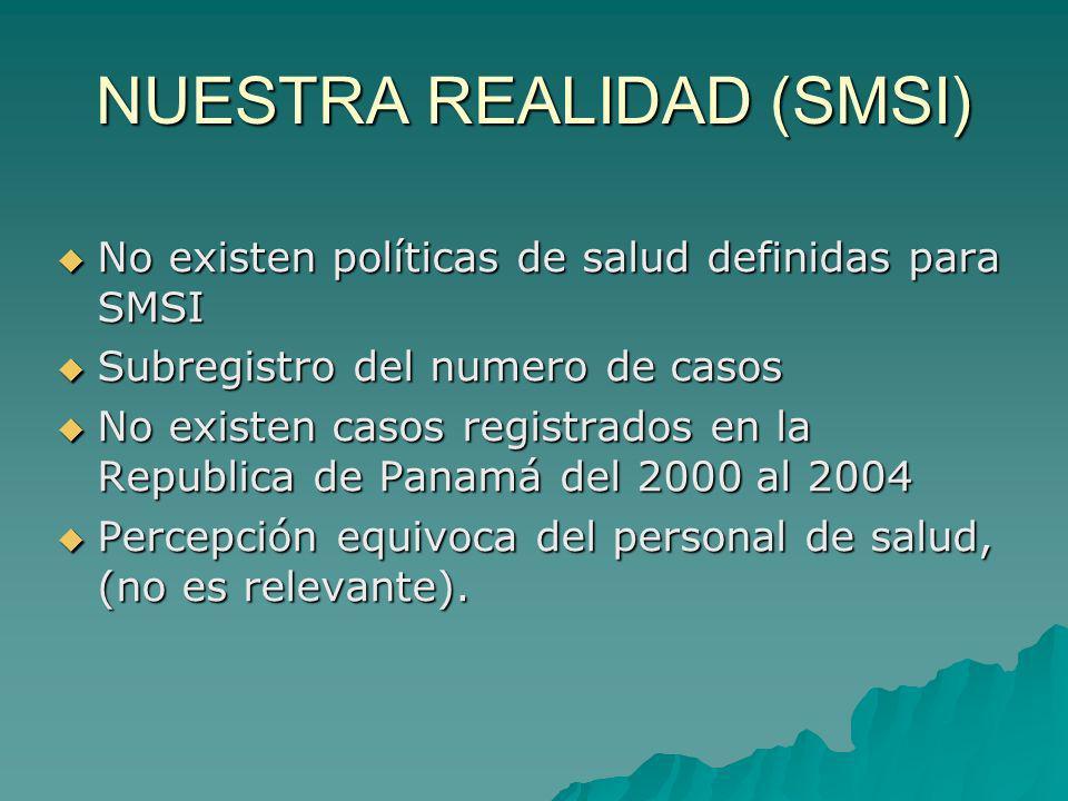 NUESTRA REALIDAD (SMSI) No existen políticas de salud definidas para SMSI No existen políticas de salud definidas para SMSI Subregistro del numero de