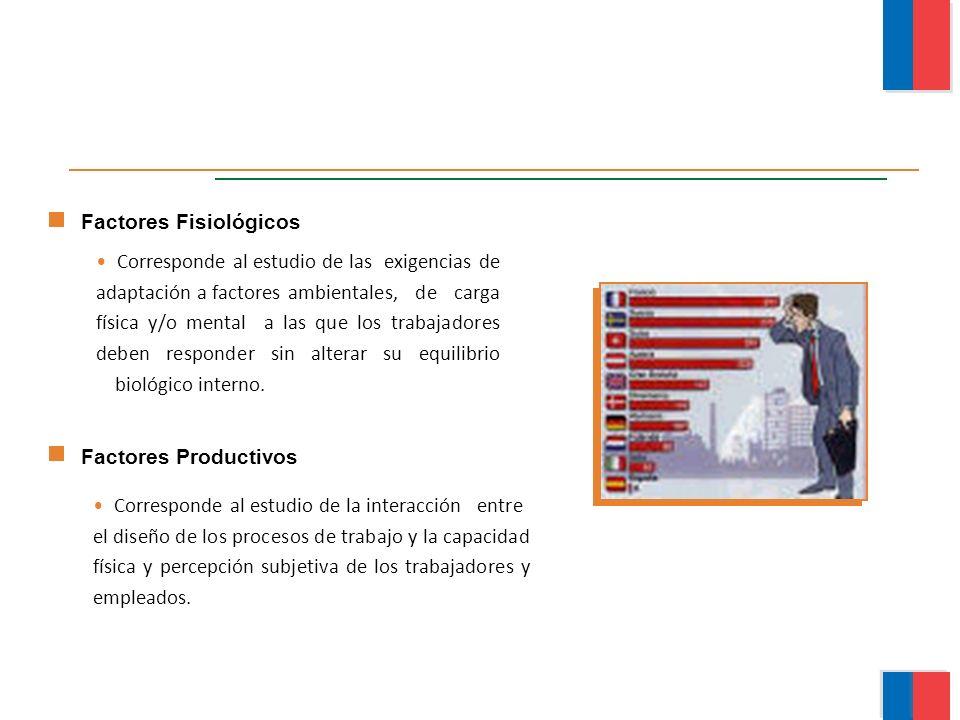 Corresponde al estudio de la interacción entre el diseño de los procesos de trabajo y la capacidad física y percepción subjetiva de los trabajadores y