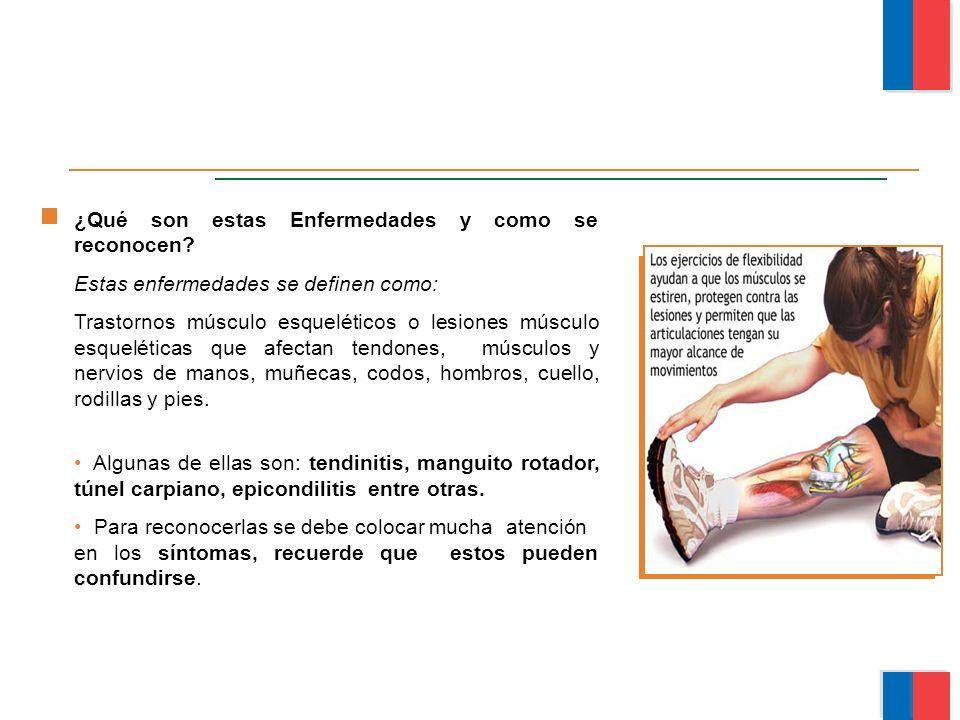 ¿Qué son estas Enfermedades y como se reconocen? Estas enfermedades se definen como: Trastornos músculo esqueléticos o lesiones músculo esqueléticas q
