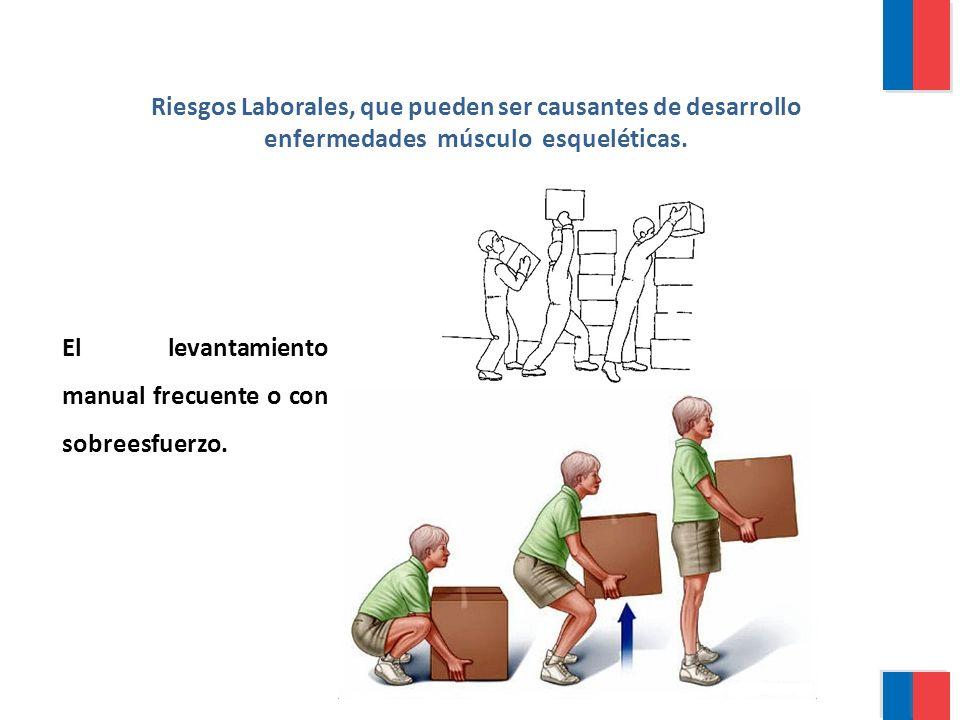 El levantamiento manual frecuente o con sobreesfuerzo. Riesgos Laborales, que pueden ser causantes de desarrollo enfermedades músculo esqueléticas.