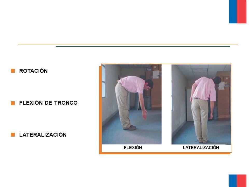 ROTACIÓN FLEXIÓN DE TRONCO LATERALIZACIÓN FLEXIÓN LATERALIZACIÓN Módulo Ergonomía Básica