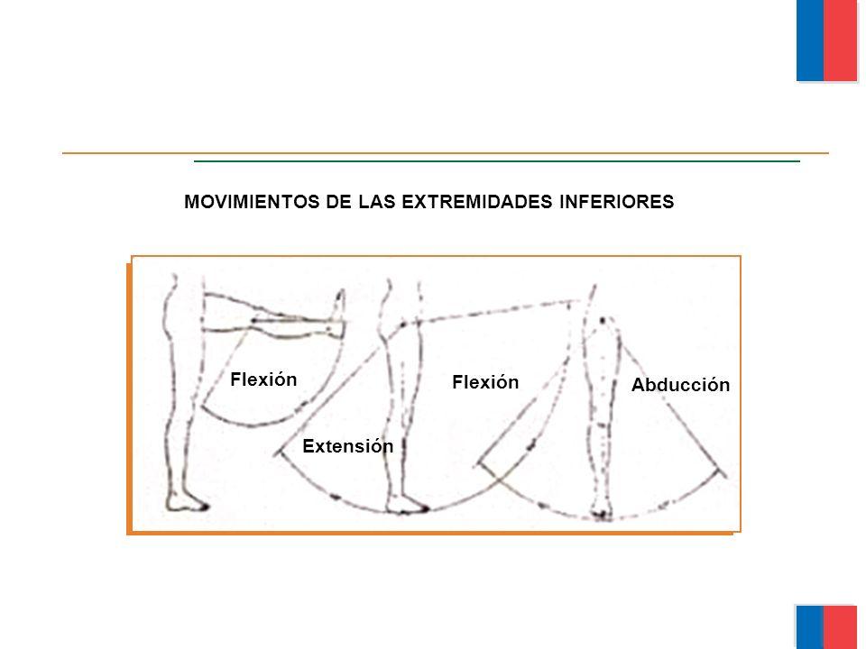MOVIMIENTOS DE LAS EXTREMIDADES INFERIORES Flexión Extensión Flexión Abducción Módulo Ergonomía Básica