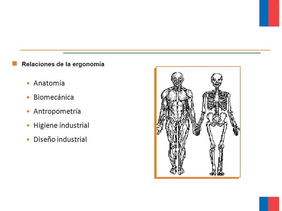 Anatomía Biomecánica Antropometría Higiene industrial Diseño industrial Relaciones de la ergonomía Módulo Ergonomía Básica