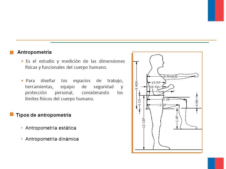 Es el estudio y medición de las dimensiones físicas y funcionales del cuerpo humano. Para diseñar los espacios de trabajo, herramientas, equipo de seg