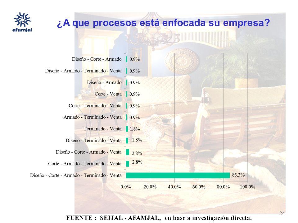 FUENTE : SEIJAL - AFAMJAL, en base a investigación directa. 24 ¿A que procesos está enfocada su empresa?