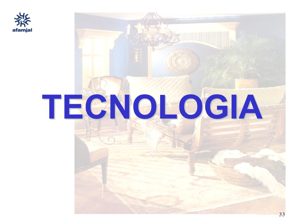 FUENTE : SEIJAL - AFAMJAL, en base a investigación directa. 33 TECNOLOGIA
