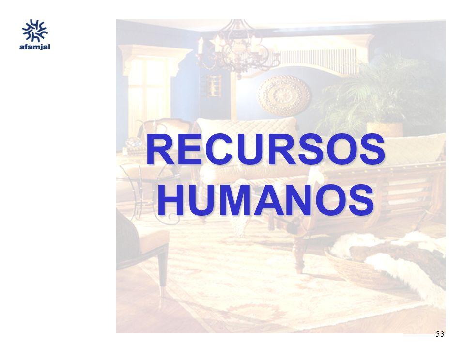 FUENTE : SEIJAL - AFAMJAL, en base a investigación directa. 53 RECURSOS HUMANOS