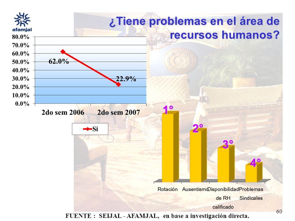 FUENTE : SEIJAL - AFAMJAL, en base a investigación directa. 60 ¿Tiene problemas en el área de recursos humanos? 1° 2° 3° 4°