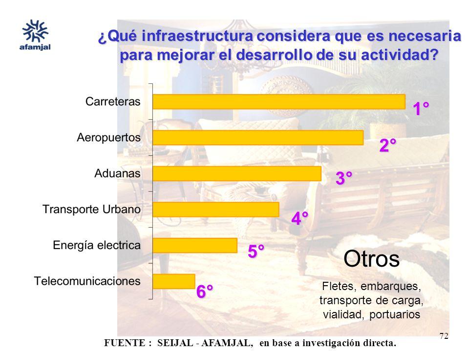 FUENTE : SEIJAL - AFAMJAL, en base a investigación directa. 72 ¿Qué infraestructura considera que es necesaria para mejorar el desarrollo de su activi