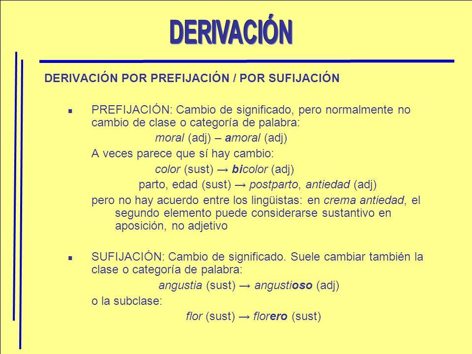 DERIVACIÓN POR PREFIJACIÓN / POR SUFIJACIÓN PREFIJACIÓN: Cambio de significado, pero normalmente no cambio de clase o categoría de palabra: moral (adj