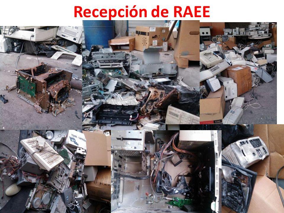 Recepción de RAEE