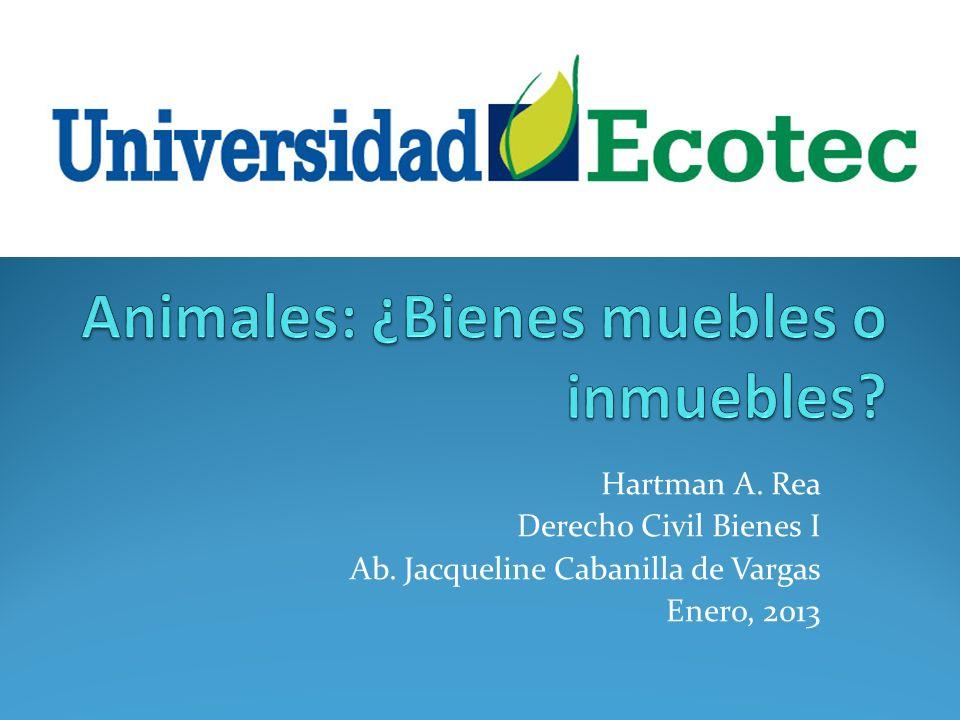 Hartman A. Rea Derecho Civil Bienes I Ab. Jacqueline Cabanilla de Vargas Enero, 2013