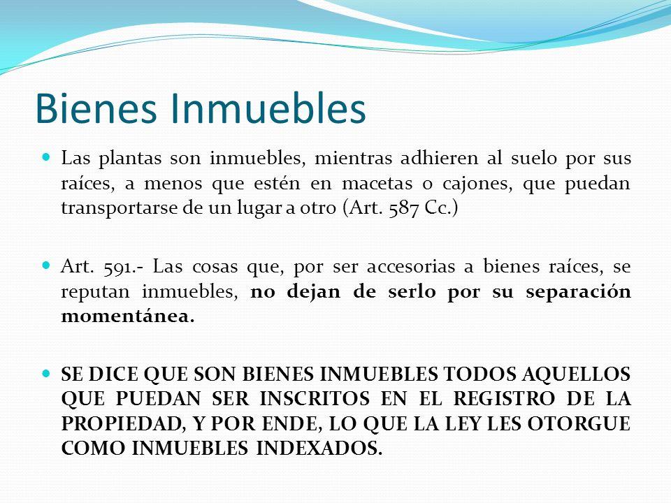 Bienes Inmuebles Las plantas son inmuebles, mientras adhieren al suelo por sus raíces, a menos que estén en macetas o cajones, que puedan transportars
