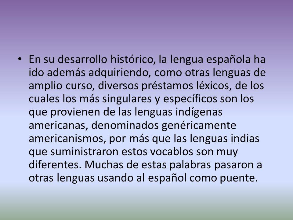 En su desarrollo histórico, la lengua española ha ido además adquiriendo, como otras lenguas de amplio curso, diversos préstamos léxicos, de los cuales los más singulares y específicos son los que provienen de las lenguas indígenas americanas, denominados genéricamente americanismos, por más que las lenguas indias que suministraron estos vocablos son muy diferentes.