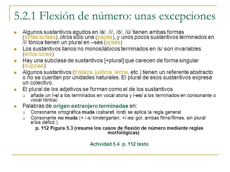 5.2.1 Flexión de número: unas excepciones Algunos sustantivos agudos en /á/, /í/, /ó/, /ú/ tienen ambas formas (sofás/sofaés), otros sólo una (papás),