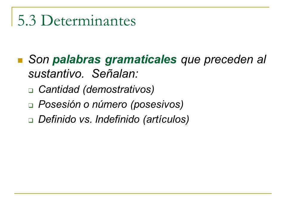 5.3 Determinantes Son palabras gramaticales que preceden al sustantivo. Señalan: Cantidad (demostrativos) Posesión o número (posesivos) Definido vs. I