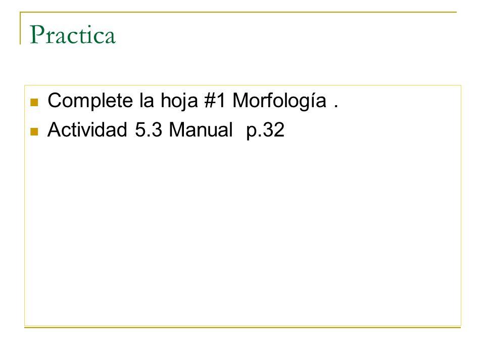Practica Complete la hoja #1 Morfología. Actividad 5.3 Manual p.32