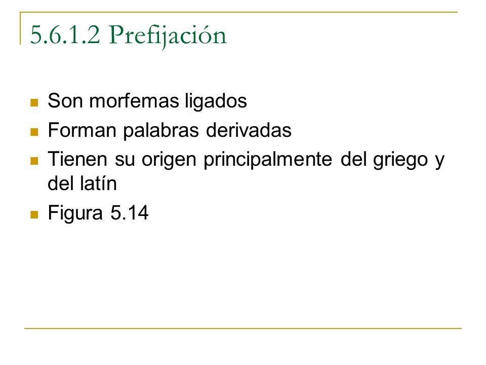 5.6.1.2 Prefijación Son morfemas ligados Forman palabras derivadas Tienen su origen principalmente del griego y del latín Figura 5.14