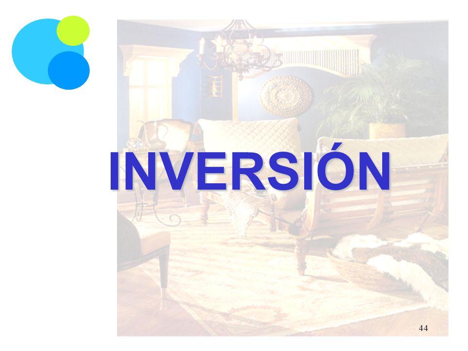 INVERSIÓN 44