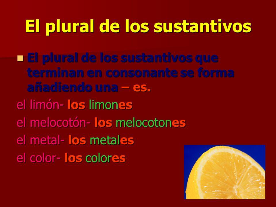 El plural de los sustantivos El plural de los sustantivos que terminan en consonante se forma añadiendo una – es.