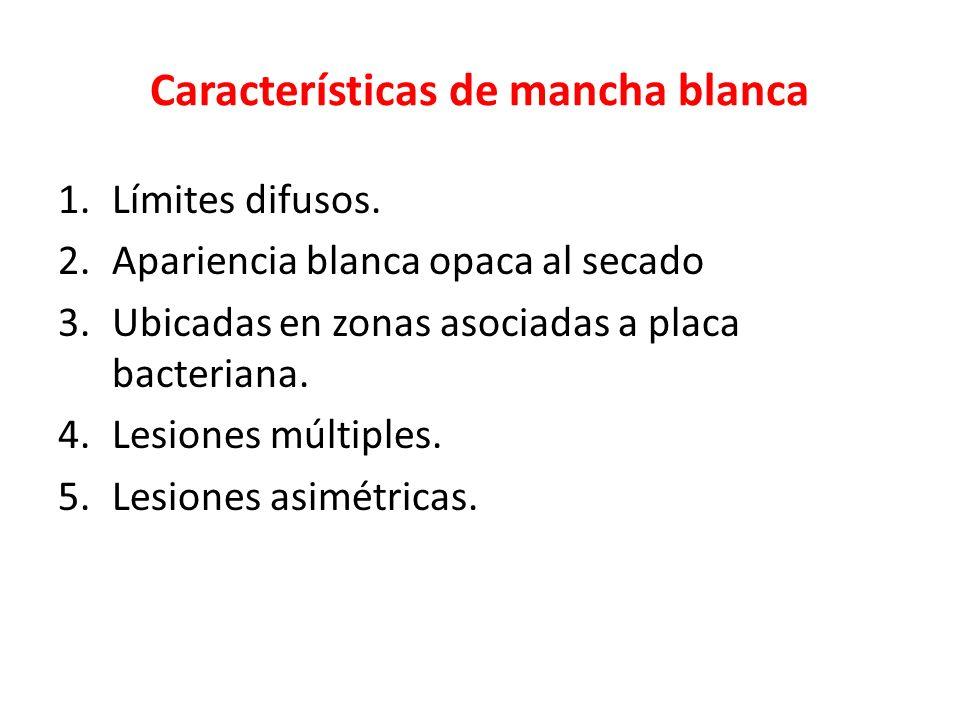 Características de mancha blanca 1.Límites difusos. 2.Apariencia blanca opaca al secado 3.Ubicadas en zonas asociadas a placa bacteriana. 4.Lesiones m