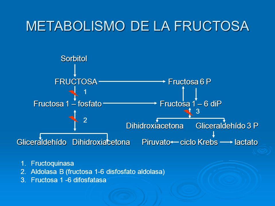 METABOLISMO DE LA FRUCTOSA Sorbitol Sorbitol FRUCTOSA Fructosa 6 P FRUCTOSA Fructosa 6 P Fructosa 1 – fosfato Fructosa 1 – 6 diP Fructosa 1 – fosfato