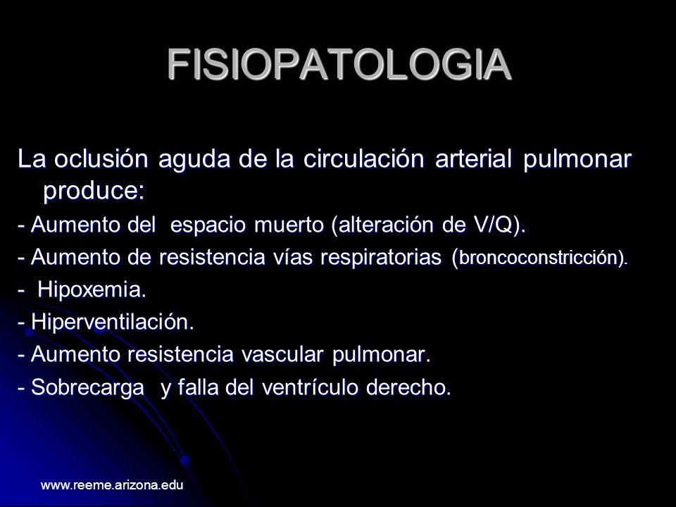 FISIOPATOLOGIA La oclusión aguda de la circulación arterial pulmonar produce: - Aumento del espacio muerto (alteración de V/Q). - Aumento de resistenc