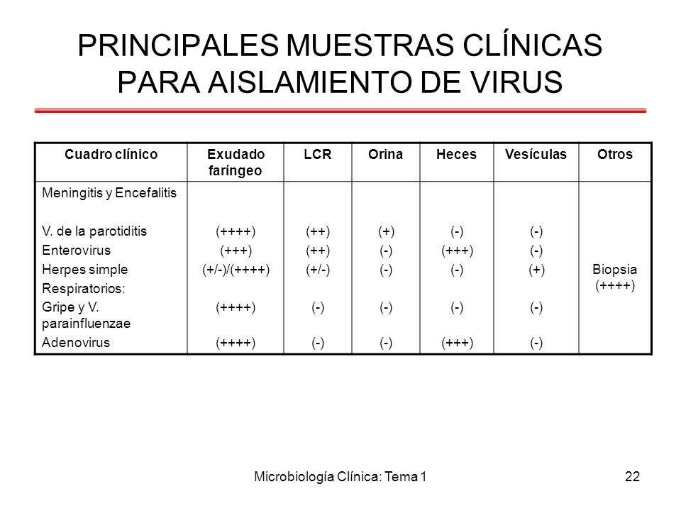 Microbiología Clínica: Tema 122 PRINCIPALES MUESTRAS CLÍNICAS PARA AISLAMIENTO DE VIRUS Cuadro clínicoExudado faríngeo LCROrinaHecesVesículasOtros Men