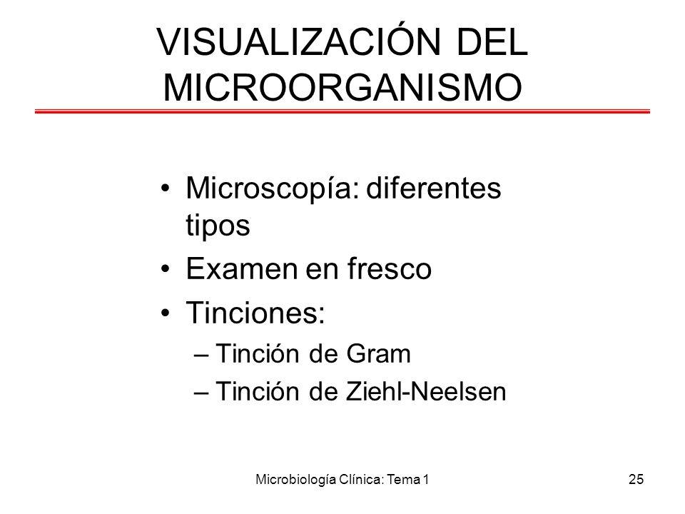 Microbiología Clínica: Tema 125 VISUALIZACIÓN DEL MICROORGANISMO Microscopía: diferentes tipos Examen en fresco Tinciones: –Tinción de Gram –Tinción d