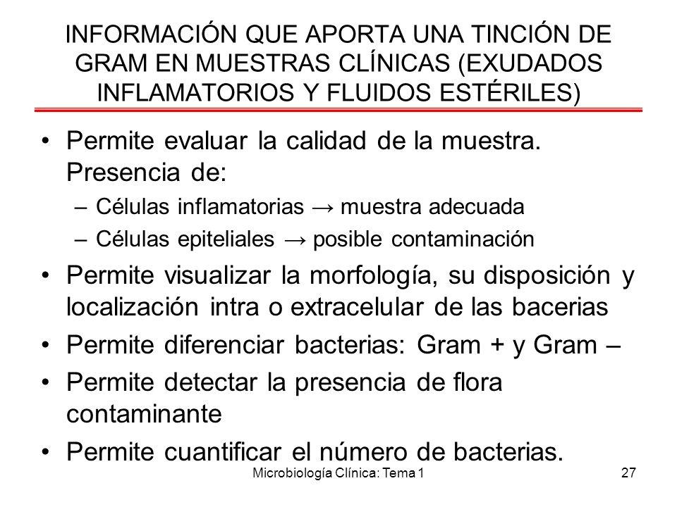 Microbiología Clínica: Tema 127 INFORMACIÓN QUE APORTA UNA TINCIÓN DE GRAM EN MUESTRAS CLÍNICAS (EXUDADOS INFLAMATORIOS Y FLUIDOS ESTÉRILES) Permite e