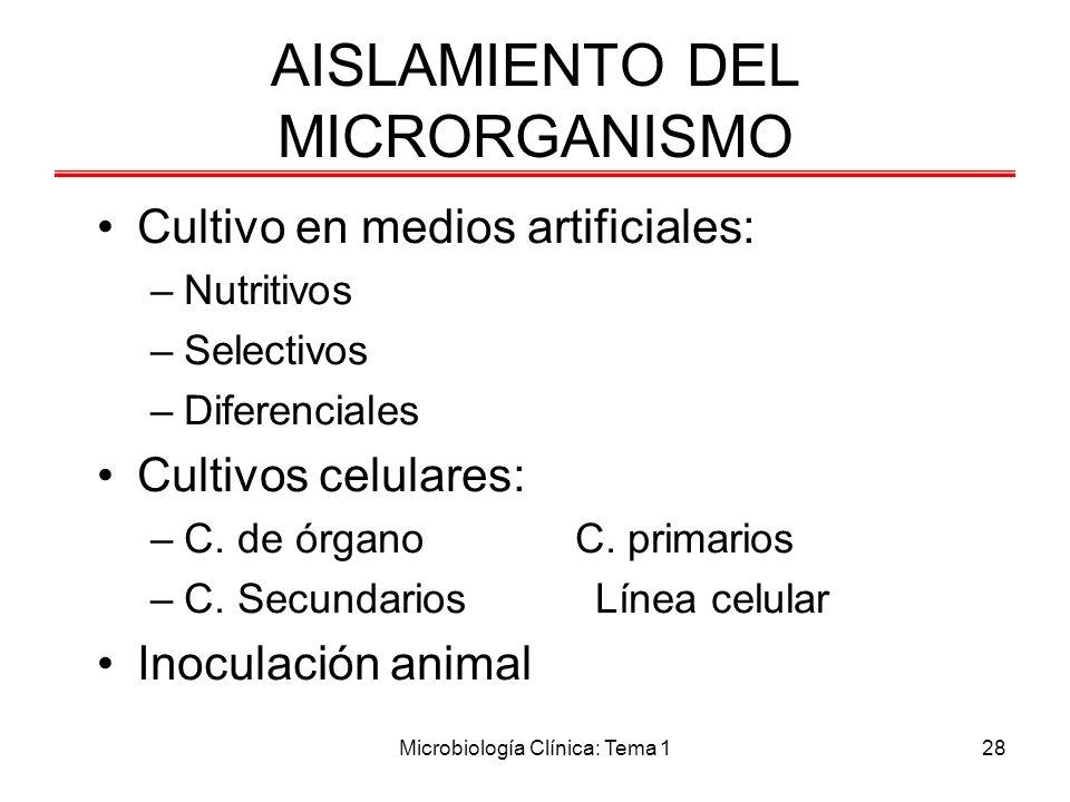 Microbiología Clínica: Tema 128 AISLAMIENTO DEL MICRORGANISMO Cultivo en medios artificiales: –Nutritivos –Selectivos –Diferenciales Cultivos celulare