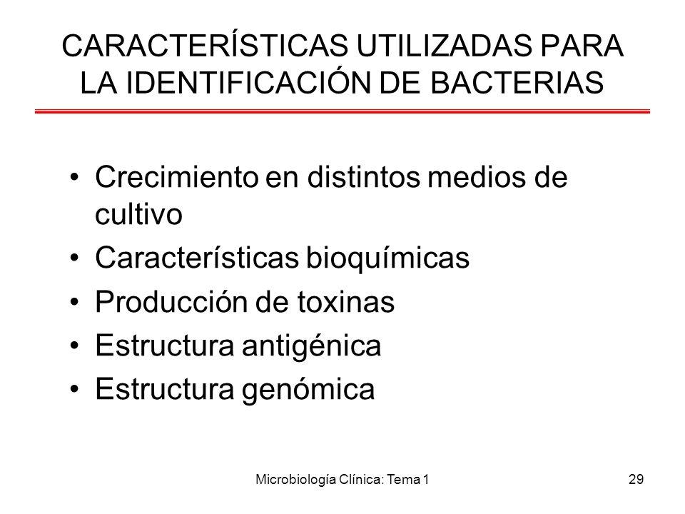 Microbiología Clínica: Tema 129 CARACTERÍSTICAS UTILIZADAS PARA LA IDENTIFICACIÓN DE BACTERIAS Crecimiento en distintos medios de cultivo Característi