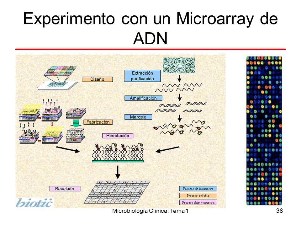 Microbiología Clínica: Tema 138 Experimento con un Microarray de ADN